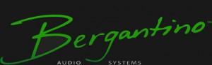 bergwebsitelogofinal_300x93